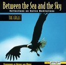 Between the Sea & The Sky: Eagle 2