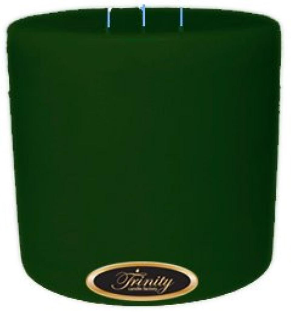 構成員符号自信があるTrinity Candle工場 – Bayberry – Pillar Candle – 6 x 6