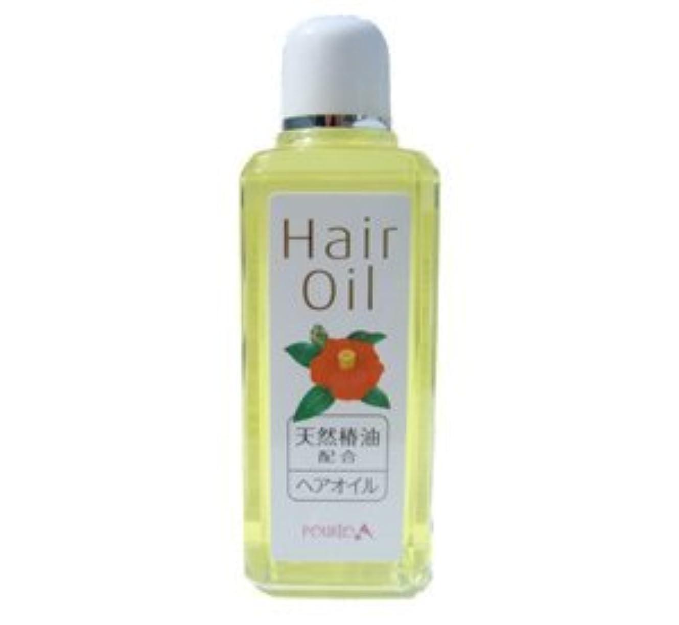 減らすレスリング多様体ポルトA 髪に自然なツヤを ヘアオイル 600