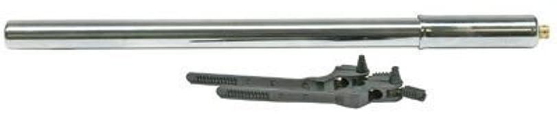 噴水ベイビー症候群Sunlite Steel Frame Pump 16 Chrome [並行輸入品]