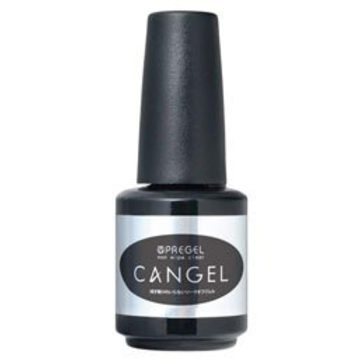 引き算あるリングレットPRE GEL ノンワイプクリア キャンジェル 14g PG-CAN-14