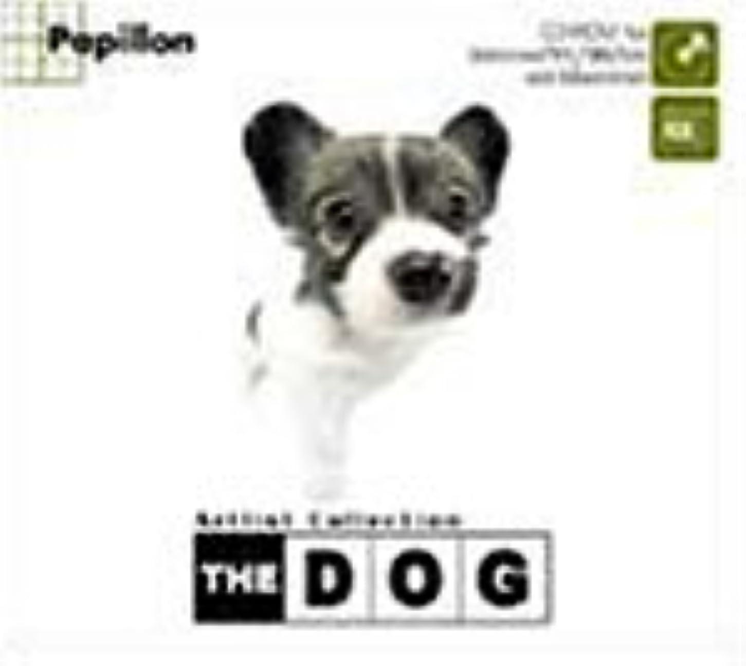 一貫したタッチ発火するTHE DOG ~Papillon