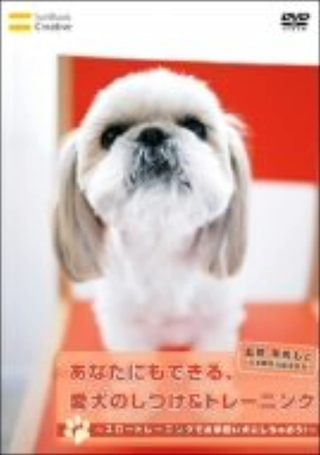 中に考慮シャベルあなたにもできる、愛犬のしつけ&トレーニング スロートレーニングでお手伝い犬にしちゃおう! [DVD]