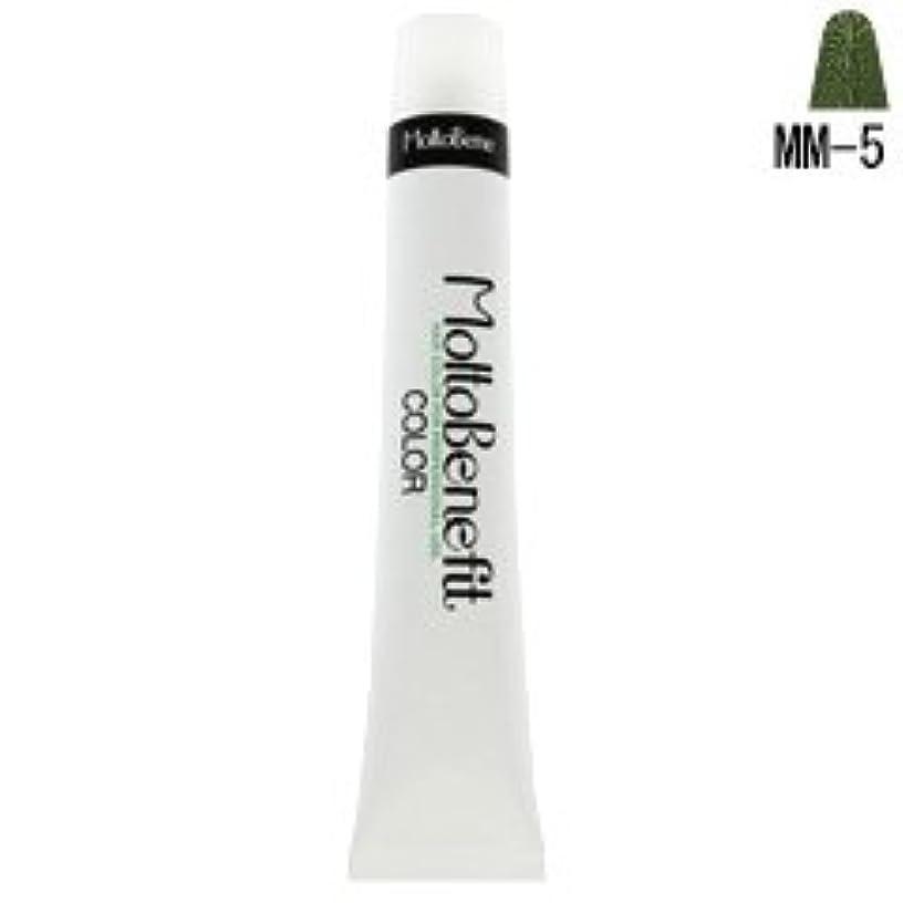 舌な真っ逆さま癌【モルトベーネ】フィットカラー グレイライトアップカラー MM-5 マットマット 60g