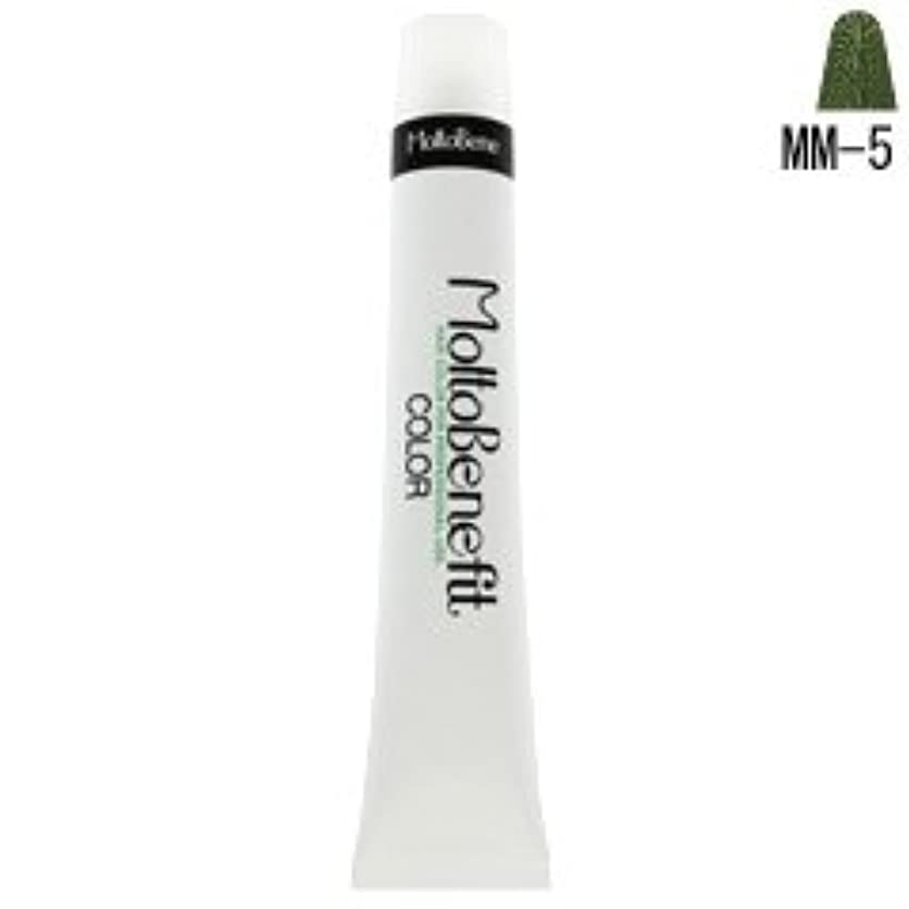 ボルト象亜熱帯【モルトベーネ】フィットカラー グレイライトアップカラー MM-5 マットマット 60g