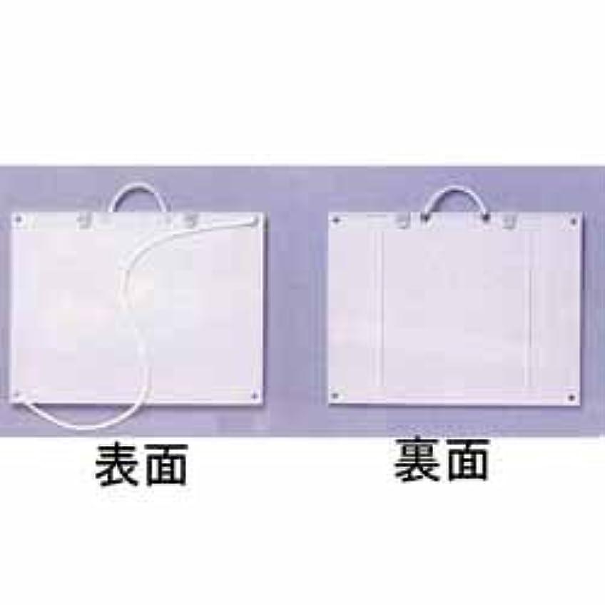 荒らすパトワお互いプラスチック画板 (EGS-G3) 4切用 (白)