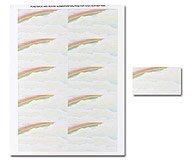 Masterpiece Rainbow Business Card - 25 Sheets 250 Cards [並行輸入品]