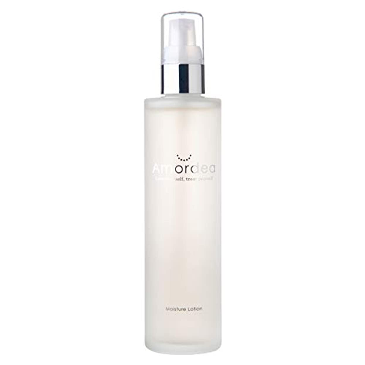 形容詞パノラマ歴史モイスチュアローション 120mL 化粧水 導入美容液