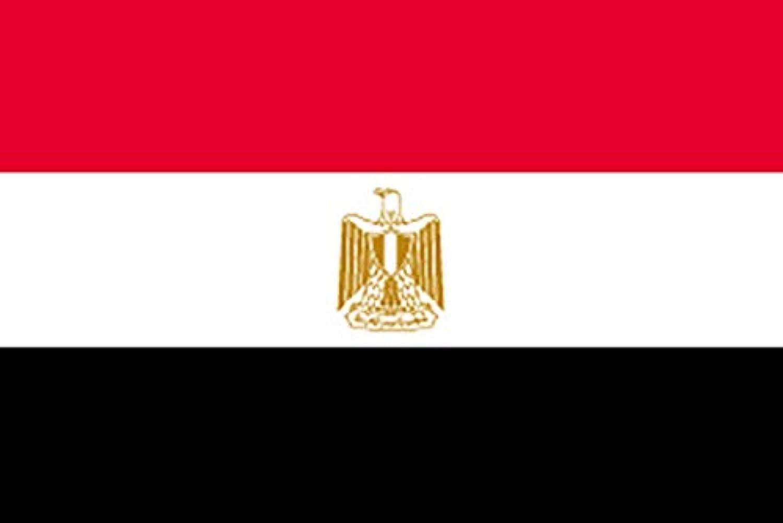 国旗 エジプト No.1 No.22907(取寄商品)