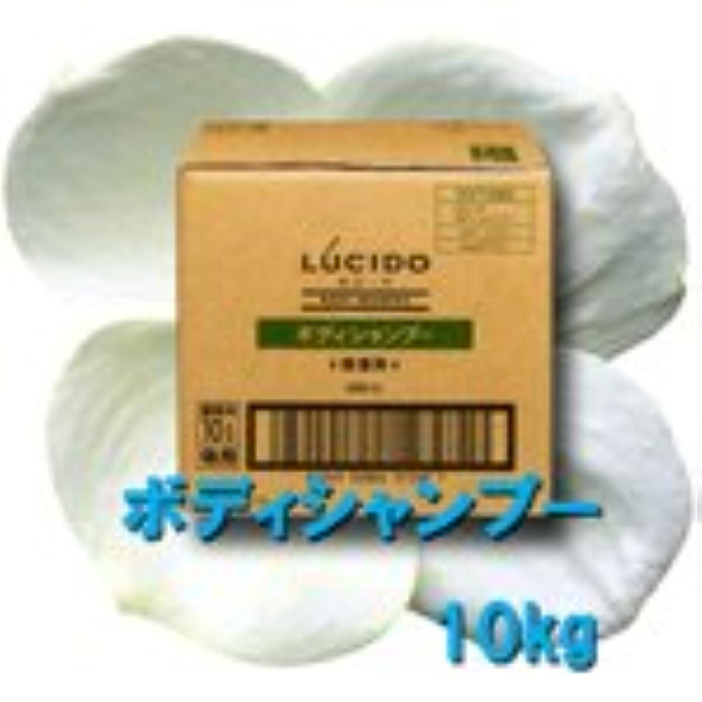 ランタンアレルギー盲目マンダム ルシード ボディシャンプー 10L 【中央有機化学】