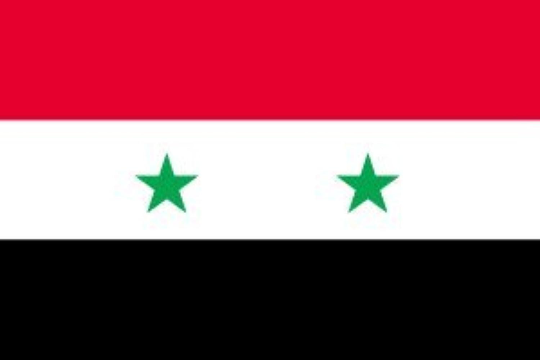 世界の国旗 シリア 国旗 [120×180cm 高級テトロン製]