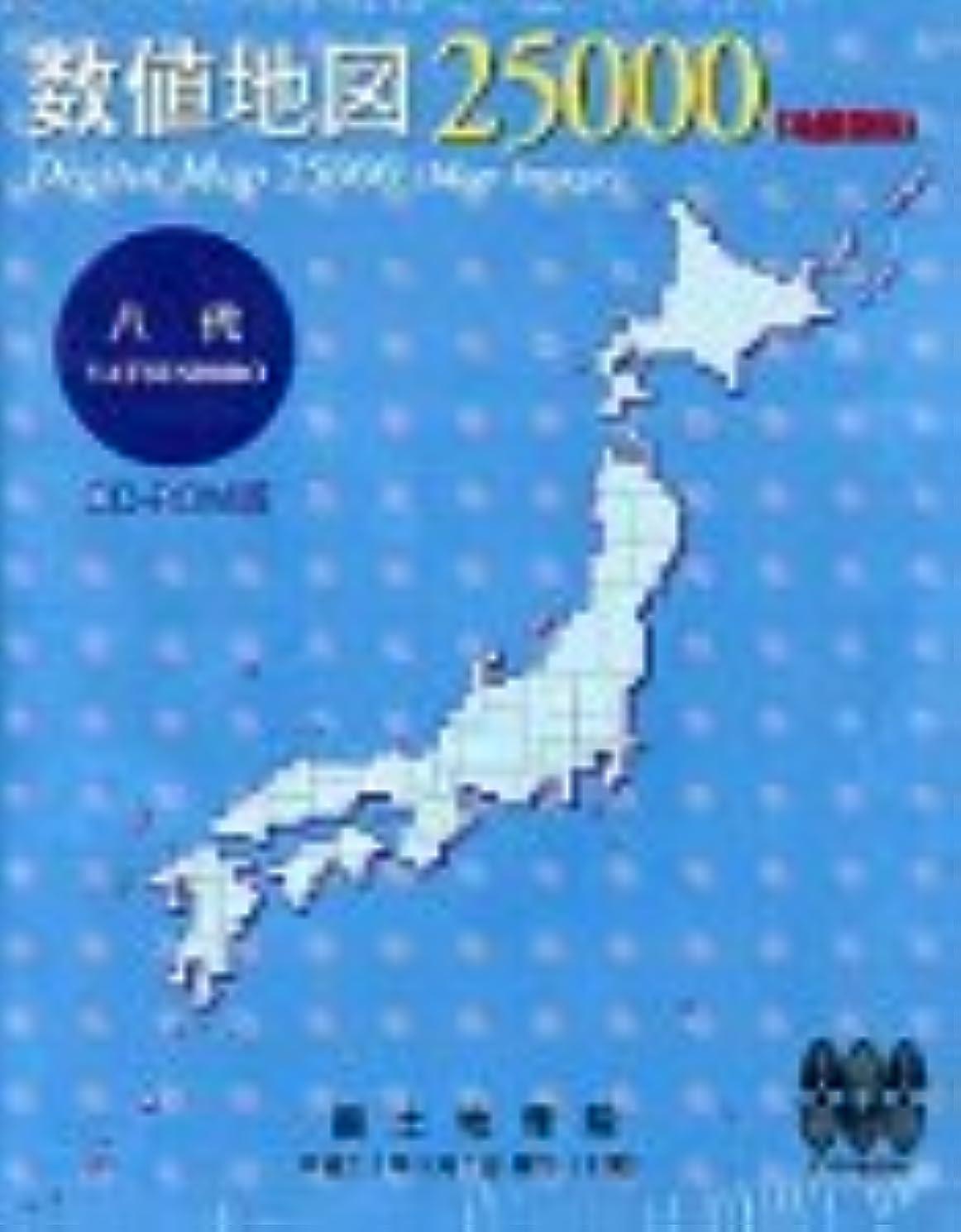 朝マルクス主義援助数値地図 25000 (地図画像) 八代