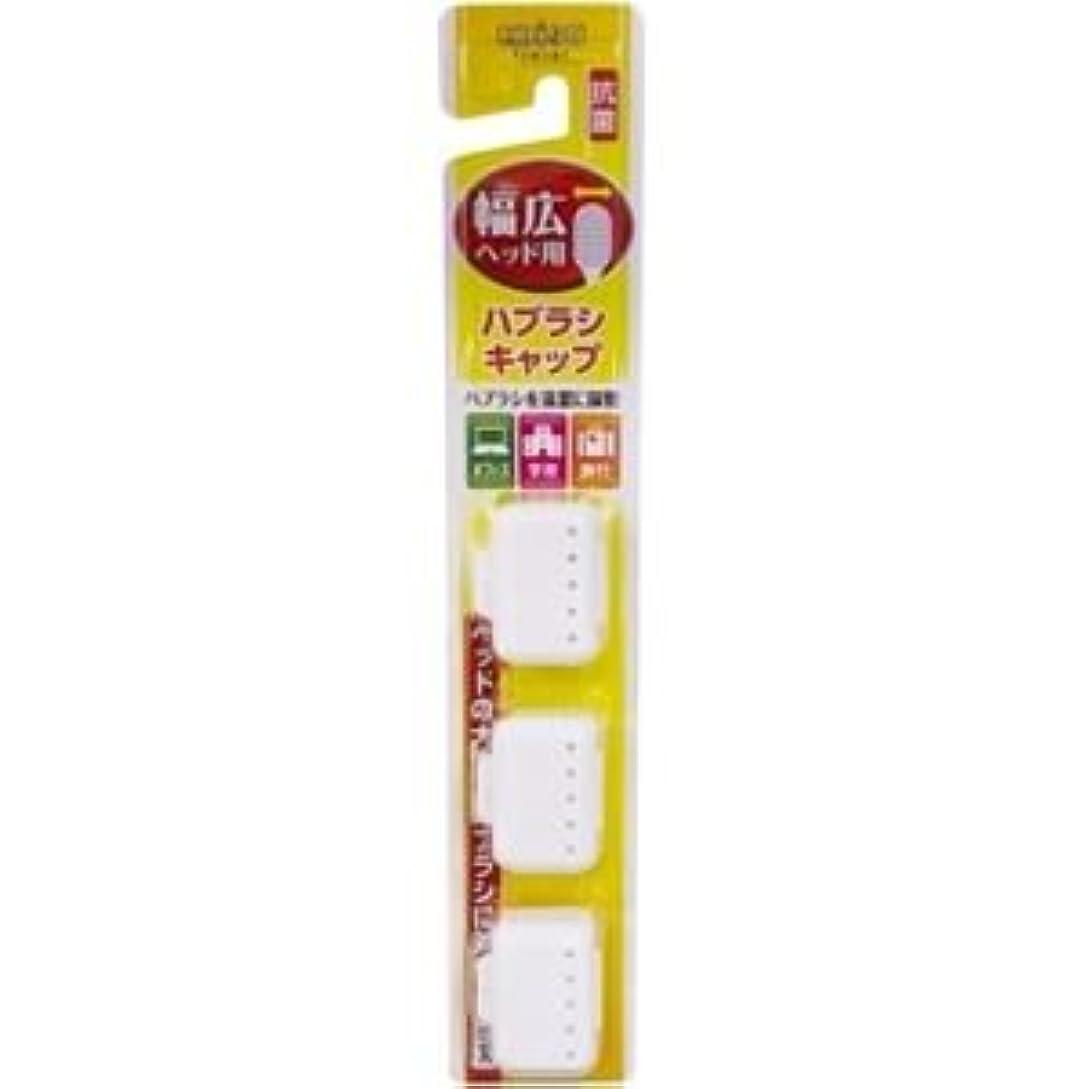 霜パークモーション(まとめ)エビス 幅広ハブラシキャップ抗菌 【×6点セット】