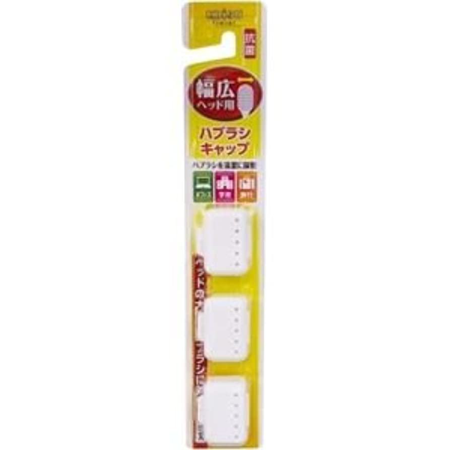 (まとめ)エビス 幅広ハブラシキャップ抗菌 【×6点セット】
