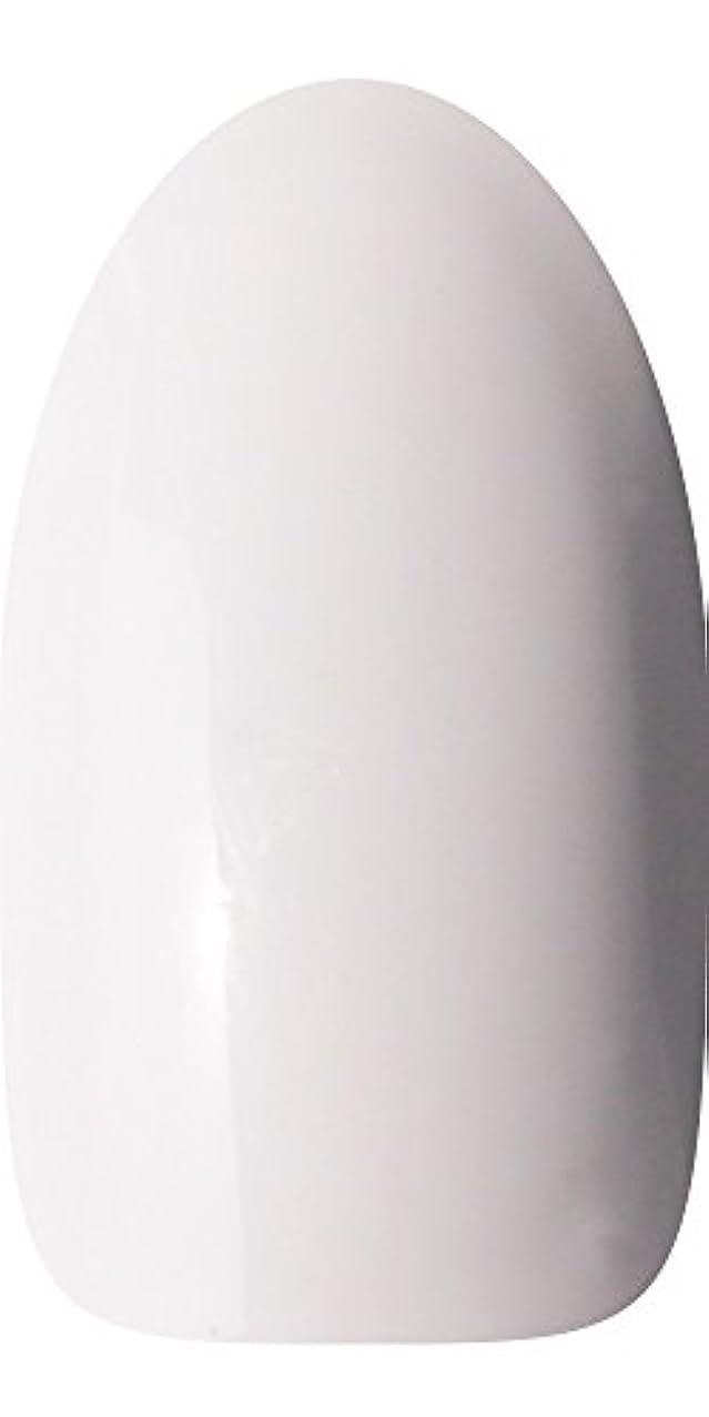 休日に中級ブラウスsacra カラージェル No.001 白雪