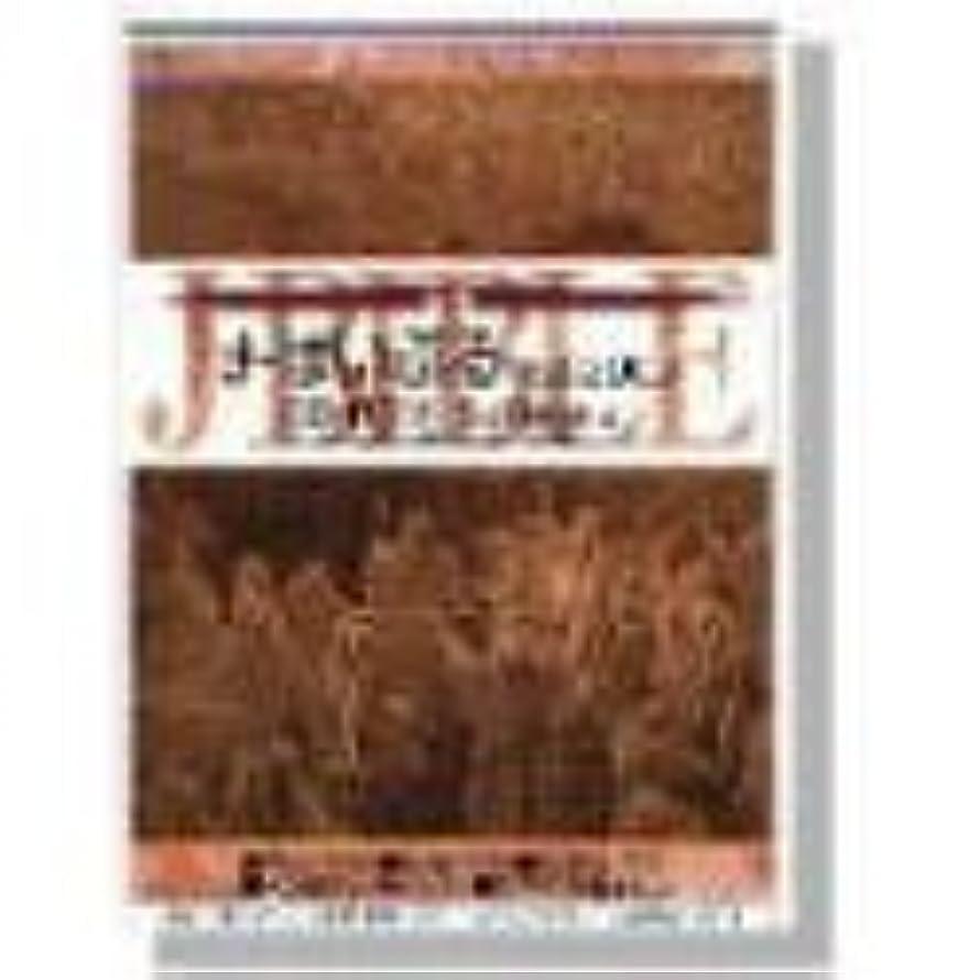 山岳変な彼のJ-ばいぶる 1st 2000 CD-ROM Software