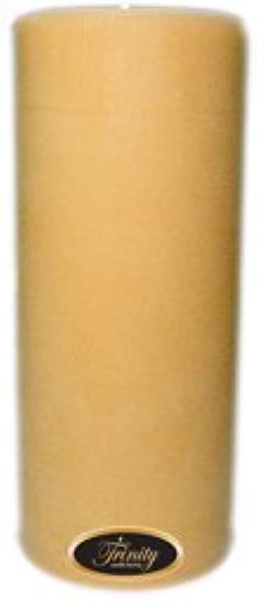失態お祝い雷雨Trinity Candle工場 – クリスマスCookie – Pillar Candle – 4 x 9