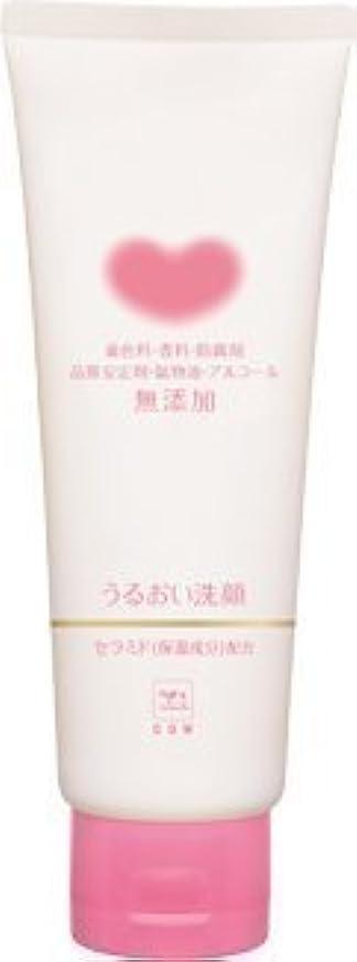 含意受粉者分数【まとめ買い】カウブランド無添加 うるおい洗顔 110g ×2セット