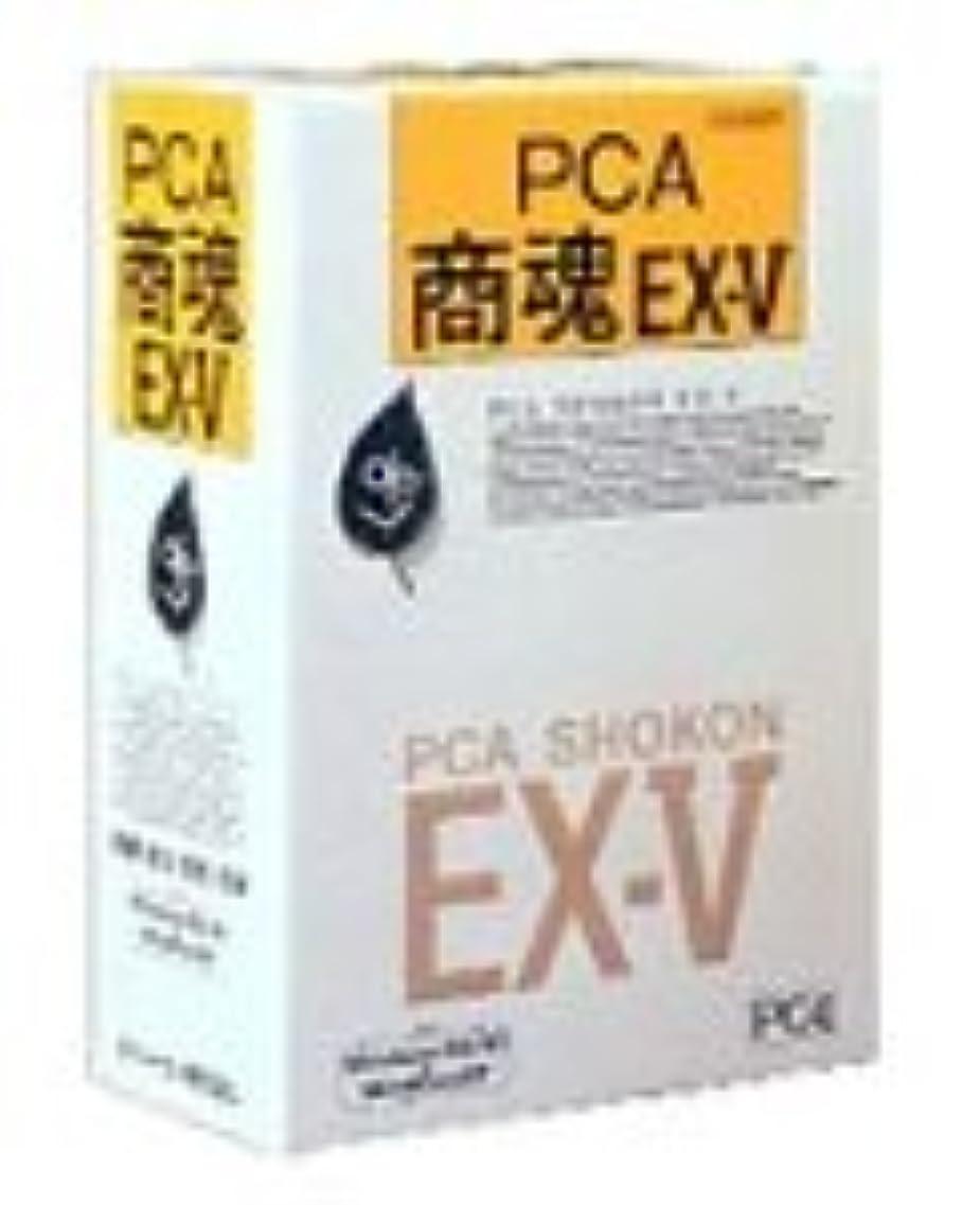 ラグ助言鉄PCA商魂EX-V スーパー