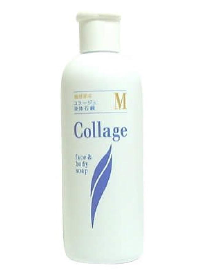 器用説教適性コラージュ M液体石鹸 200mL