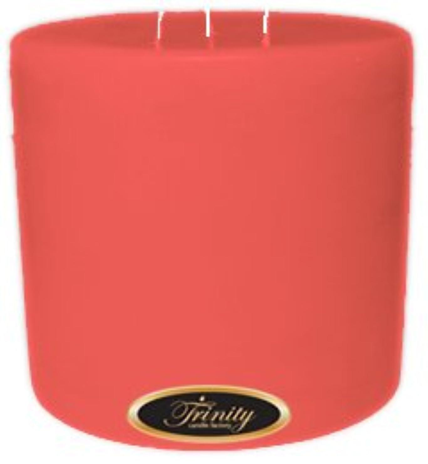 貢献する信頼性のあるポンドTrinity Candle工場 – 楽園の鳥 – Pillar Candle – 6 x 6