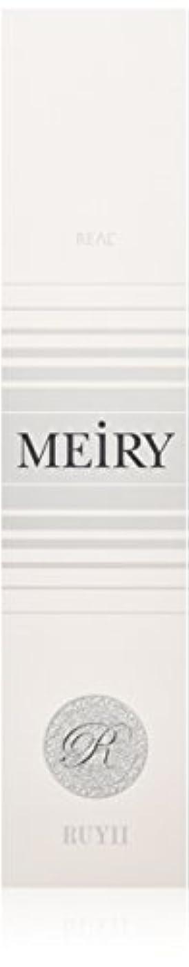 微生物レポートを書くどこかメイリー(MEiRY) ヘアカラー  1剤 90g 2N/4