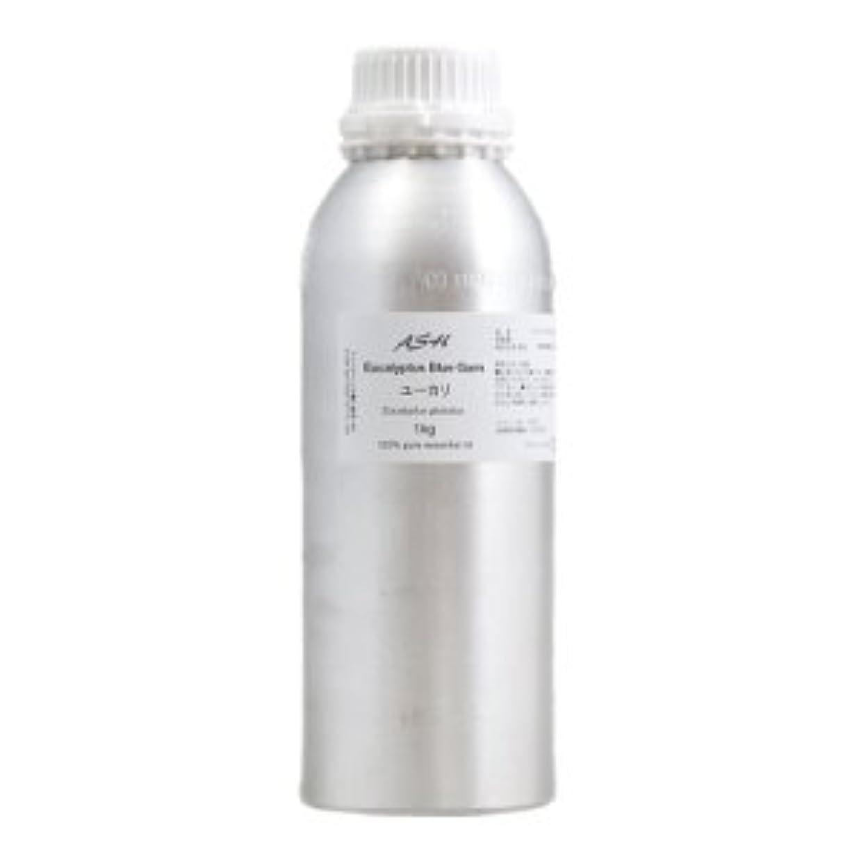 シール数霧ASH ユーカリ エッセンシャルオイル 業務用1kg AEAJ表示基準適合認定精油