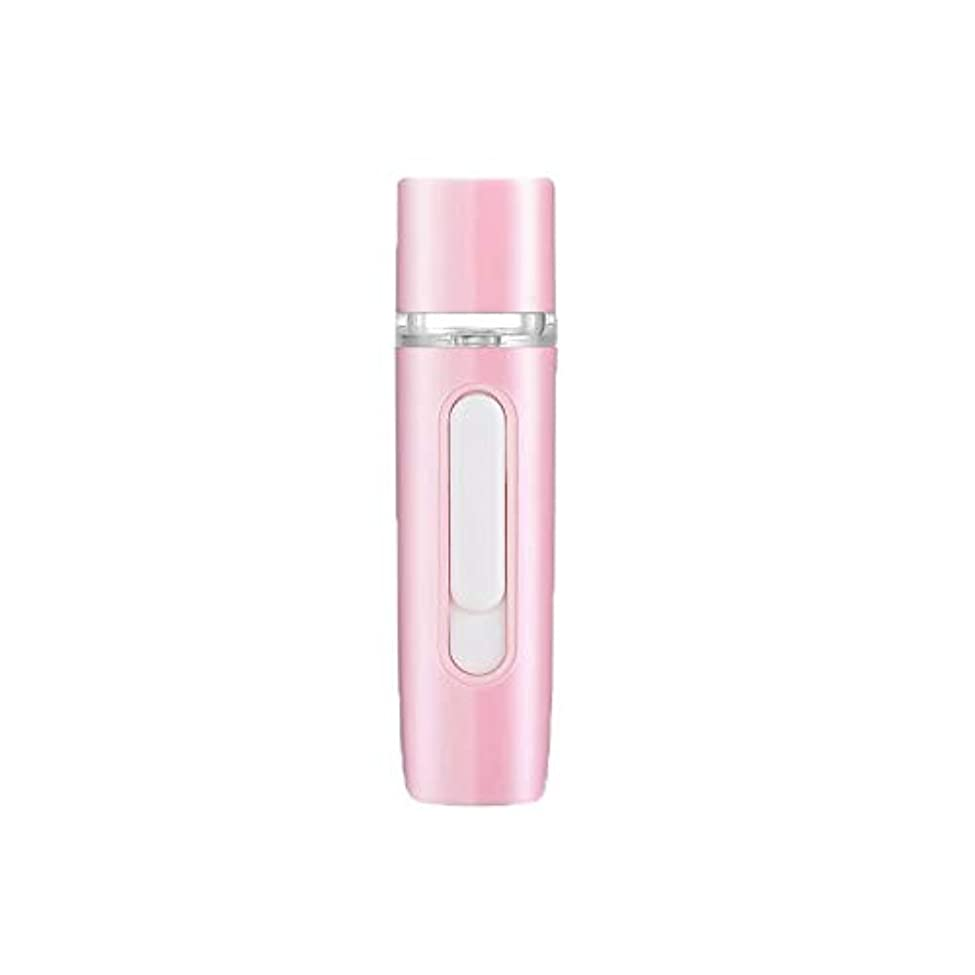 急速なパドル極めて重要なZXF 新しいハンドヘルドポータブル水和機器美容機器ABS材料コールドスプレー蒸し面マルチプレックス充電宝物加湿器ピンクセクションホワイト 滑らかである (色 : Pink)