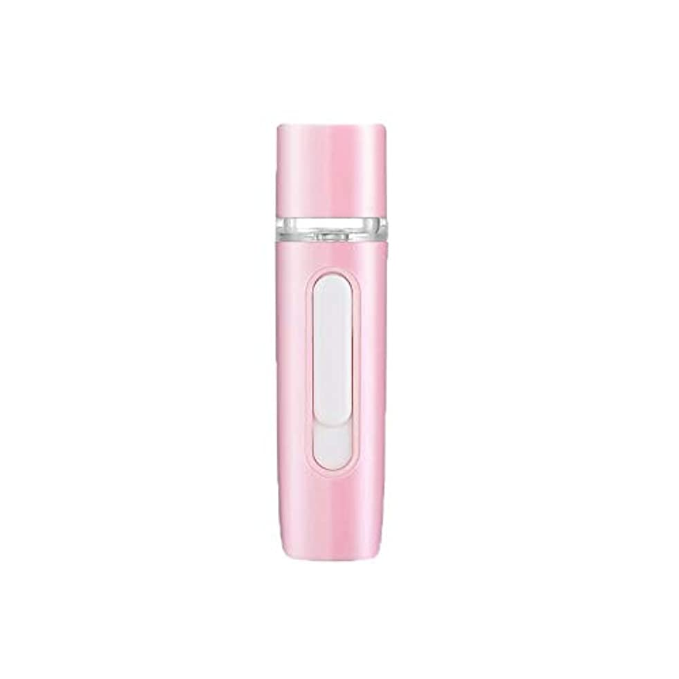 専門主婦聖域ZXF 新しいハンドヘルドポータブル水和機器美容機器ABS材料コールドスプレー蒸し面マルチプレックス充電宝物加湿器ピンクセクションホワイト 滑らかである (色 : Pink)