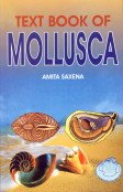 Textbook of Mollusca