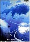 青の6号 dts edition Vol.3 [DVD]