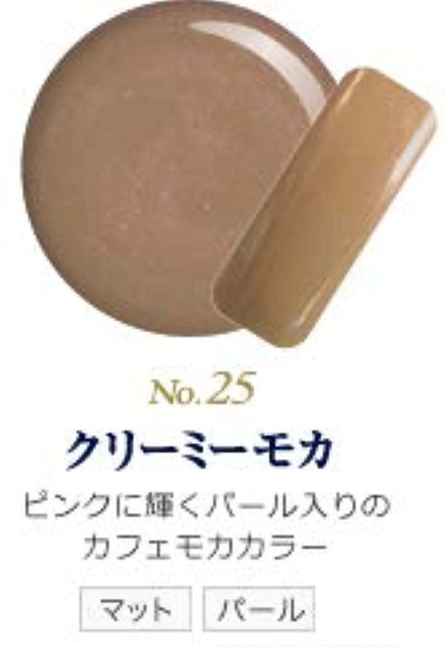 お風呂を持っている人パッド発色抜群 削らなくてもオフが出来る 新グレースジェルカラーNo.11~No.209 (クリーミーモカ)
