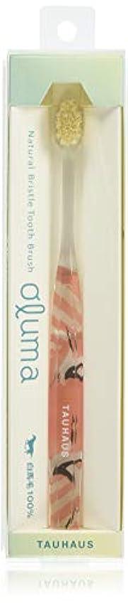 すきアライメントできればOluma 白馬毛歯ブラシ(鶴)