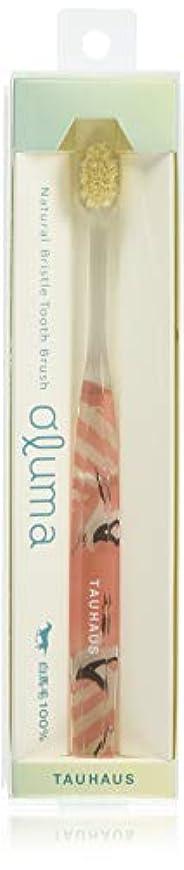 没頭する貫通する刃Oluma 白馬毛歯ブラシ(鶴)