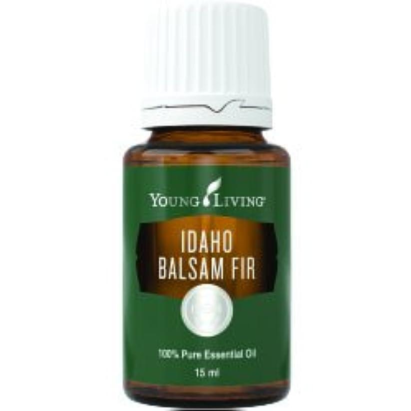 危険を冒します露骨な献身アイダホバルサムモミエッセンシャルオイル15ml by Young Livingエッセンシャルオイルマレーシア Idaho Balsam Fir Essential Oil 15ml by Young Living Essential...