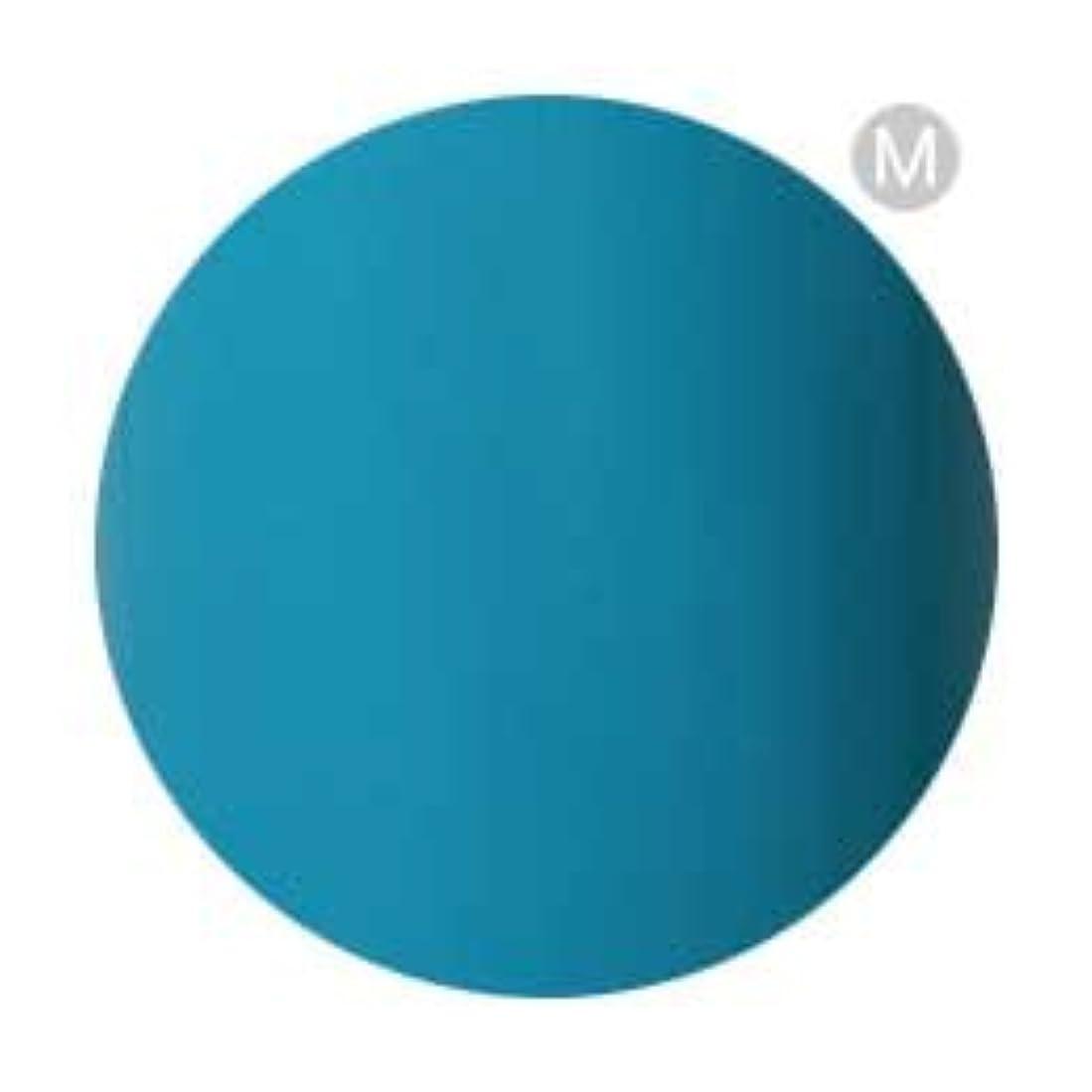 原点実行する値Palms Graceful カラージェル 3g 079 ターコイズブルー