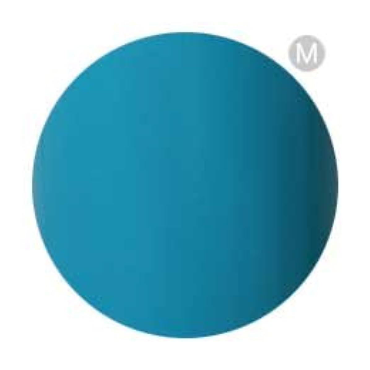 分類手集まるPalms Graceful カラージェル 3g 079 ターコイズブルー