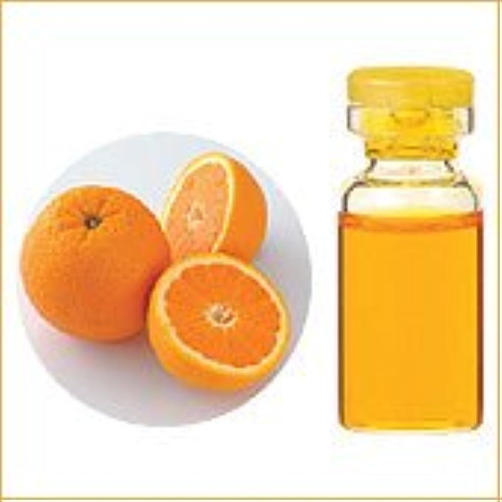 給料情緒的一般的な【生活の木】オレンジスイート 10mL