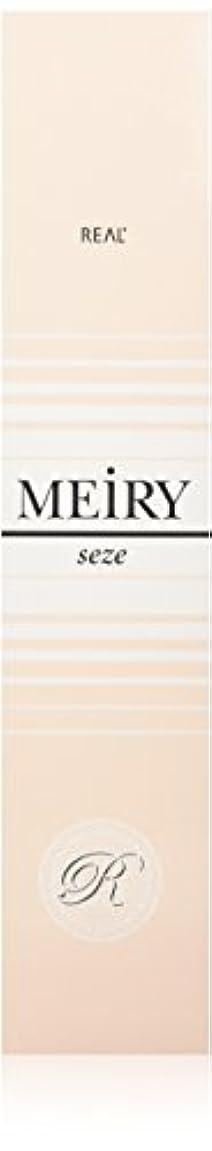 注釈を付けるパイロット政治家メイリー セゼ(MEiRY seze) ヘアカラー 1剤 90g 8NB