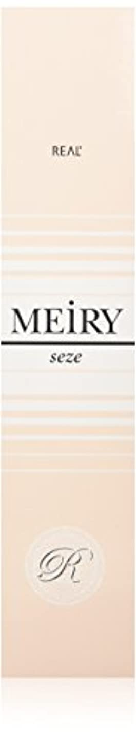 バブル呪いカタログメイリー セゼ(MEiRY seze) ヘアカラー 1剤 90g 8NB