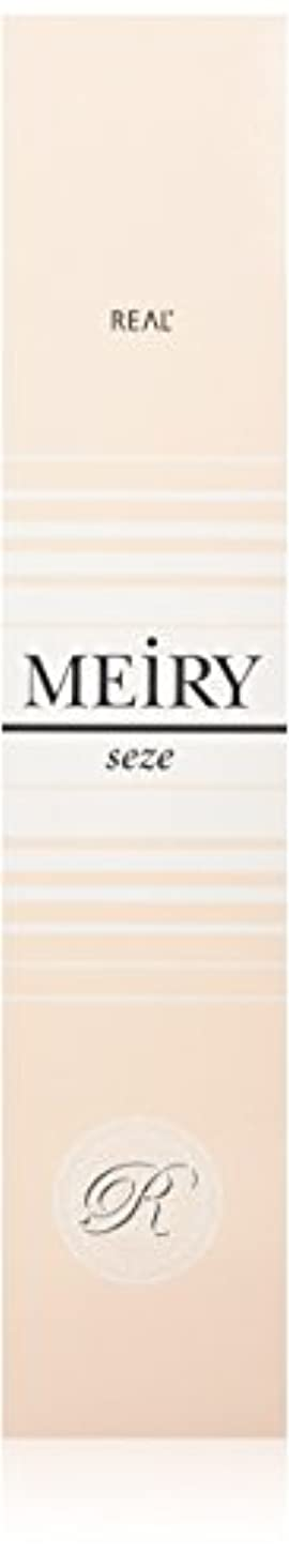 ソフトウェア征服者設置メイリー セゼ(MEiRY seze) ヘアカラー 1剤 90g 8NB
