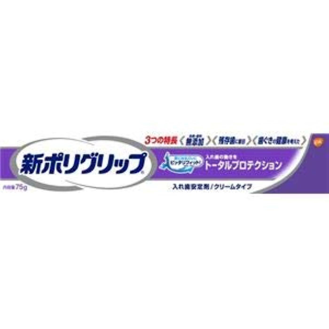 予想外香り全部(まとめ)グラクソスミスクライン 新ポリグリップ トータルプロテクション 75g 【×6点セット】