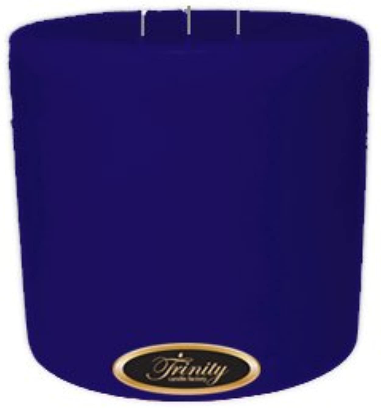 チャーミング神経衰弱スチュアート島Trinity Candle工場 – Blueberry Fields – Pillar Candle – 6 x 6