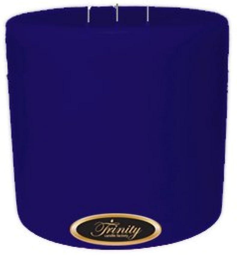 ささいな広範囲図Trinity Candle工場 – Blueberry Fields – Pillar Candle – 6 x 6