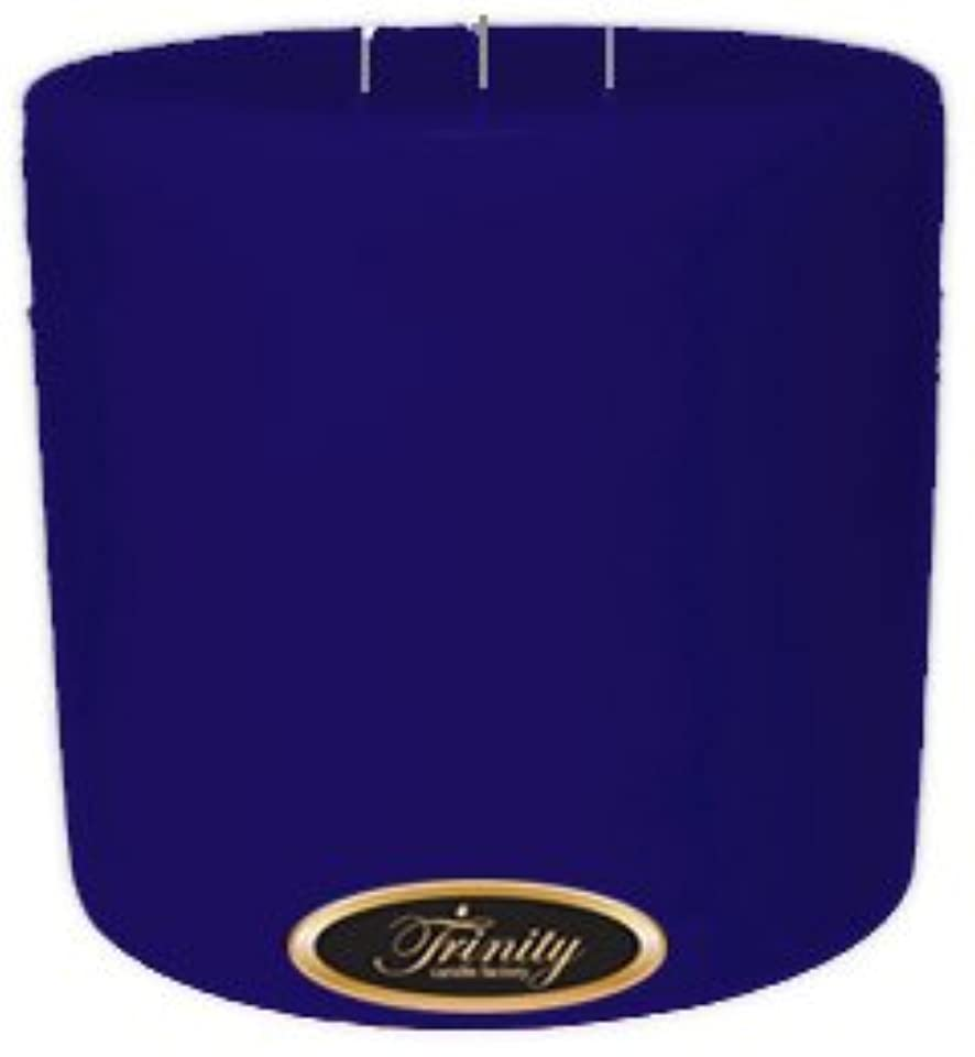 実質的家主樹木Trinity Candle工場 – Blueberry Fields – Pillar Candle – 6 x 6