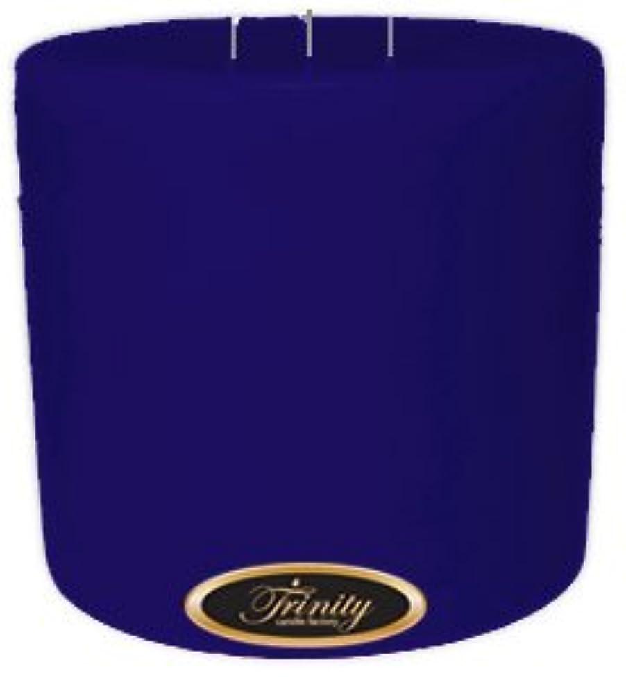 バイオレット誇張する湿地Trinity Candle工場 – Blueberry Fields – Pillar Candle – 6 x 6
