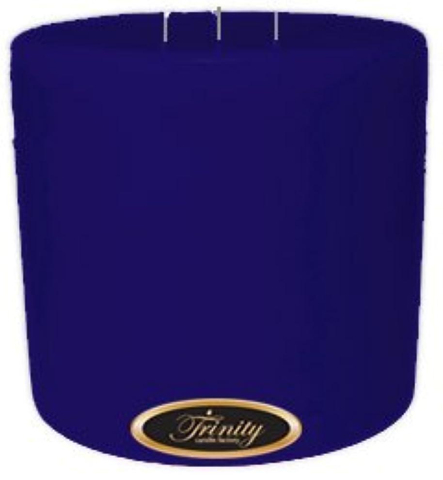 パネル爬虫類爬虫類Trinity Candle工場 – Blueberry Fields – Pillar Candle – 6 x 6