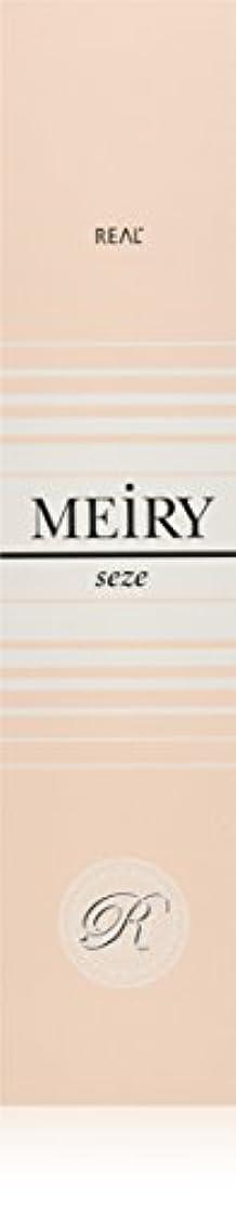黒くする冷蔵庫マントメイリー セゼ(MEiRY seze) ヘアカラー 1剤 90g 6NB