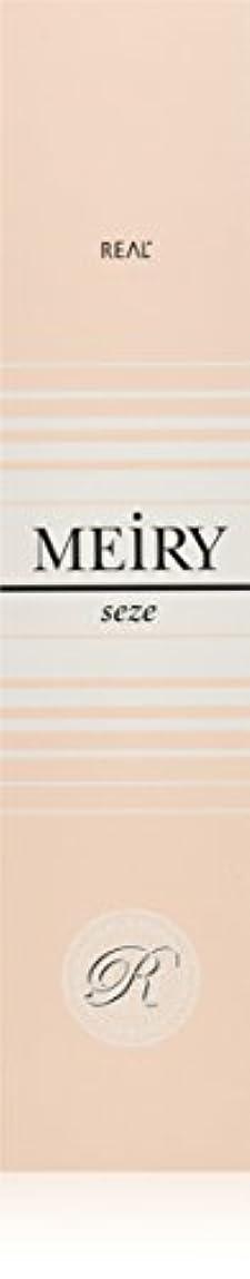 遠え円形のフォーマットメイリー セゼ(MEiRY seze) ヘアカラー 1剤 90g 6NB