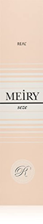 遅滞上に築きますハンドブックメイリー セゼ(MEiRY seze) ヘアカラー 1剤 90g 6NB